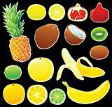 Tropical fruits set on black