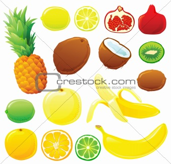 Tropical fruits set without outlines