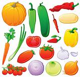 Vegetable set with color outlines