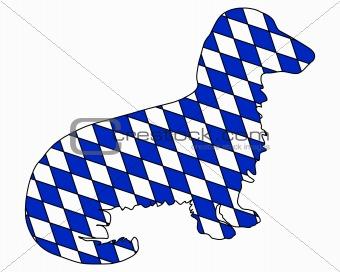Bavarian long haired badger