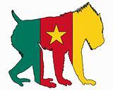 Mandrill Cameroon