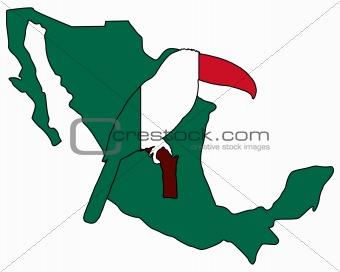 Toucan Mexico