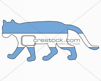 Cougar Argentina