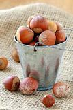 hazelnuts in a bucket on a natural background