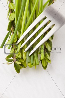 Fork with herbs