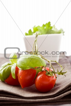 Tomato and Parsley on napkin