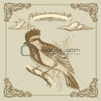 Retro card with bird