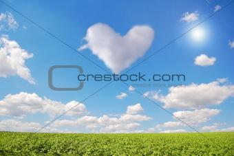 Clean sky and green field with abstract cloud heart.
