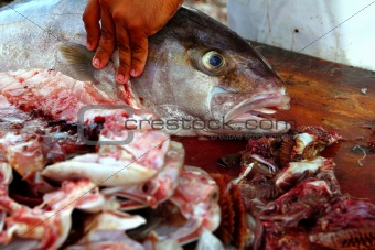 fishmonger preparing amberjack fish fillet