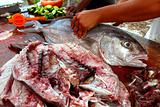 fishmonger preparing amberjack fish fillet