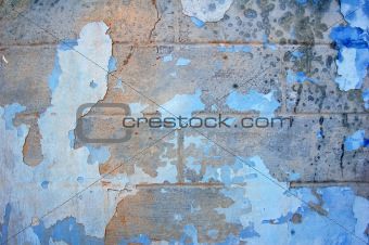 Mold at wall. Background photo.