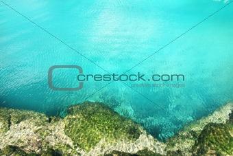 cenote mangrove turquoise water Mayan Riviera