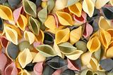 Colorfull pasta shells
