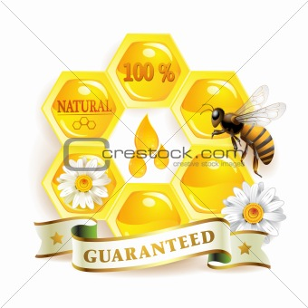 Honeycombs and bee