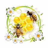 Two bees and honeycombs