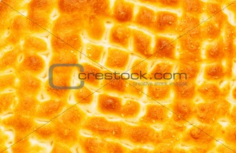 Close up of bread crust with sesame seeds