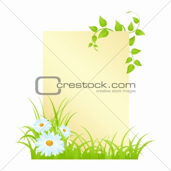 Letter with camomiles