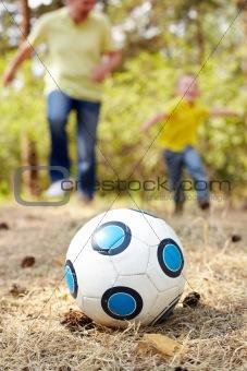 Ball on grassland
