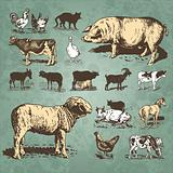 vintage farm animals set (vector)