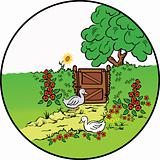 Rural  fence, flowers and farm geese . Vector