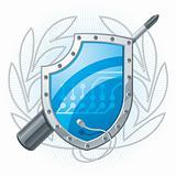Electronic Shield