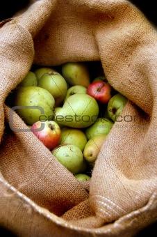 Apples in sack