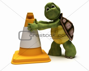 tortoise with a caution cone
