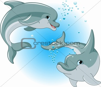 Dolphins couple