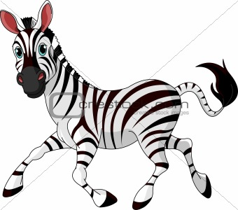 Funny running   Zebra