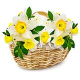 flowers in the wicker basket