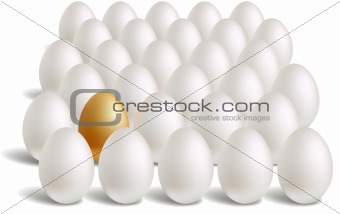 white & unique gold eggs rows