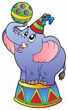 Cartoon circus elephant