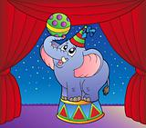 Cartoon elephant on circus stage 1