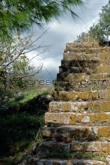grassed staircase