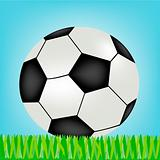 Soccer ball on green herb