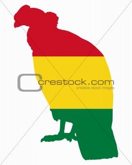 Andean Condor Bolivia