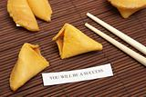 Successful Fortune Cookie