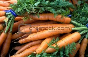 Carrots at the Farmer's Market