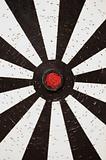 white dartboard target