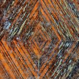 wood growth rings pattern