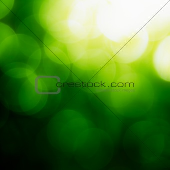 Square Green Bokeh Background.