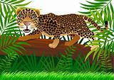 leopard cartoon