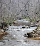Spring on a wild river
