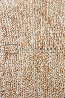 Carpet surface texture