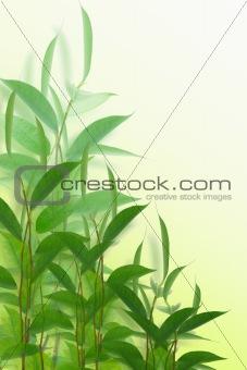Green palnts
