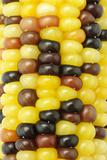 Colorful Indian corns background