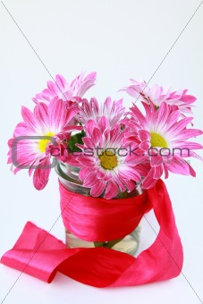 pink chrysanthemum flowers  with a red ribbon