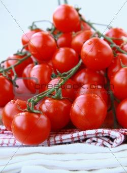 Tomatoes Cherry fresh ripe on the kitchen towel