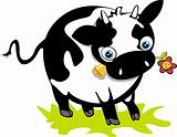 Cute cow