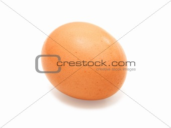 close up of egg on white background